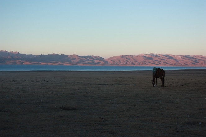 Evening at Song Kul