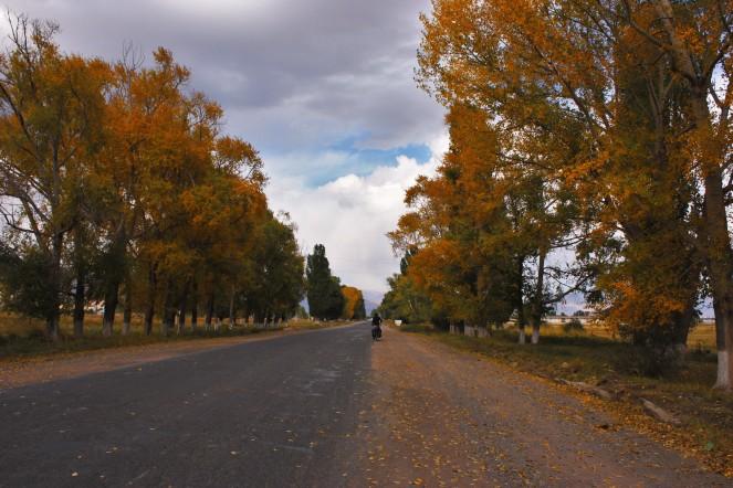Autumn had arrived
